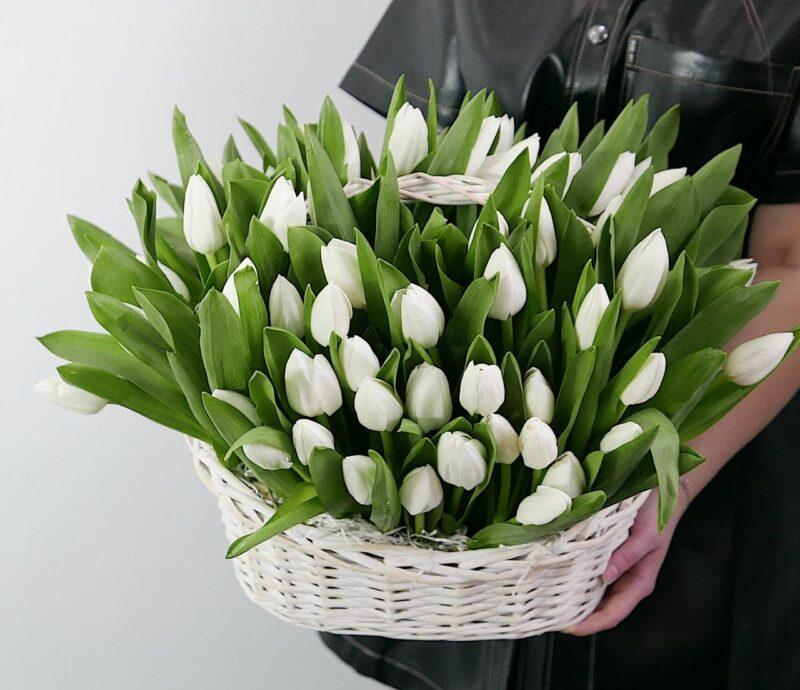 Корзина с белыми тюльпанами 101 шт.